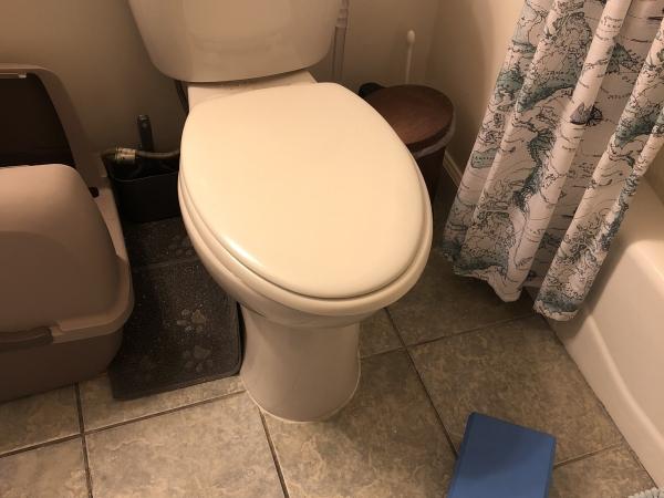 Yoga blocks in front of toilet